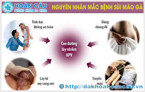 Những nguyên nhân gây bệnh sùi mào gà: Bạn cần biết